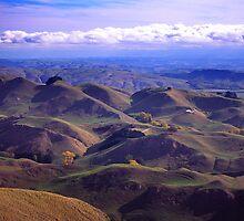 Kiwi Hills by John Violet