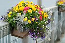 Bouquet of Friendship ~ Haines Alaska by Barbara Burkhardt