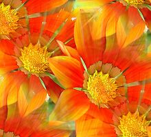 Seamless Vibrant Yellow Gazania Flower by taiche