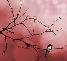 Red Dawn by Susan Gary