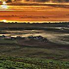 Misty Morning by Del419