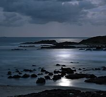 Sawtell Beach Under Moonlight by Wendy  Meder