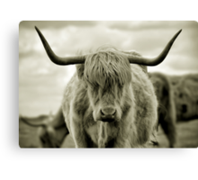 Are you talkin' to me? Canvas Print