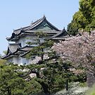 Japanese Palace by Katerina Down