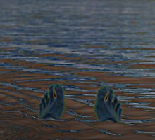 SILTY FEET © Sand or Water by Vicki Ferrari