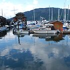Evening at Cowichan Bay Marina, British Columbia, Canada by Carol Clifford