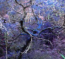 A Certain Symmetry, in Blue by Asoka