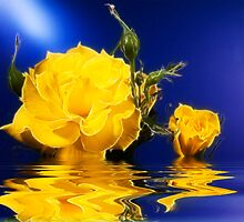 Glowing Yellow Rose by Trudy Wilkerson