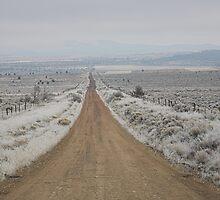 dirt road, Sagebrush Sea , Oregon , United States of America   by Christopher Barton