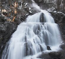 Stave Falls in winter, British Columbia by Christopher Barton