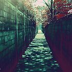 The Alley by Sue Cotton