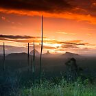 Glasshouse Mountains Sunset by Matthew Stewart