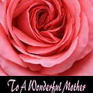 To a Wonderful Mother by Peri