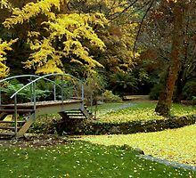 Alfred Nicholas Gardens-Autumn by Tom Newman