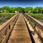 Wellfleet Bridge by capecodart