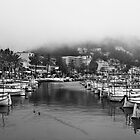Misty afternoon in Port De Soller by SpencerCopping