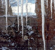 Icicles on Eaves 3 by SteveOhlsen