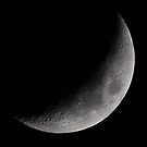 Moon 5-28-09 by VanillaDolphin