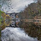 Knaresborough & The River Nidd by SteveMG