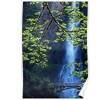 Focal Point - Multnomah Falls - Oregon Poster