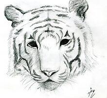 Tiger by Adriana Dias