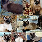 Bella's Collage by Marjorie Wallace