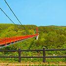 Bridge  by komashyaru