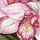 Pink Orchid by Pamela Plante