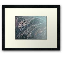 Iceflowers Framed Print