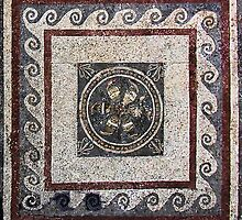 Household Mosaic, Delos  by Christopher Biggs