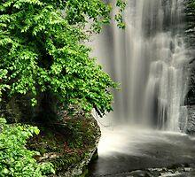 Dingmans Falls by Stephen Vecchiotti