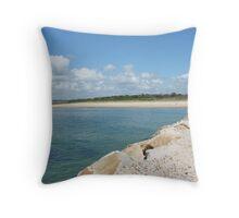(2)-Breakwater Bay Throw Pillow