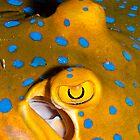 Eyes!!! by Marcel Botman