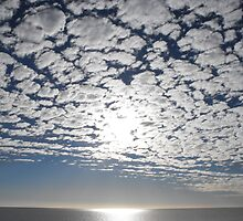 Shark Bay, Western Australia, Cloud Formations  by Richard  Willett