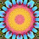 Kaleidoscope Colours by JuliaWright