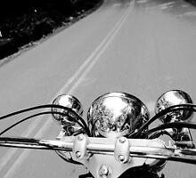 Free Cruising by Zohar Lindenbaum