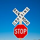 USA. New Mexico. Route 66. near Montoya. Railroad Crossing and sign. by Alan Copson