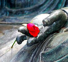 Buddha Rose by Bob Wall