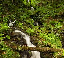 Gibson Mill Waterfall by Steve  Liptrot
