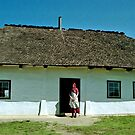 Grekul House - Ukrainian Cultural & Heritage Village, near Edmonton, Alberta, Canada by Adrian Paul