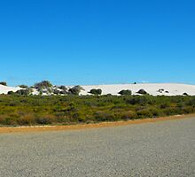 Panoramic shot of the road to the Pinnacles.  by Richard  Willett