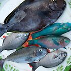 Fresh Fish 3 by Werner Padarin
