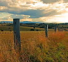 Fence Posts by Derek Andersen Photography