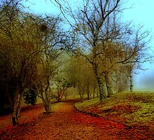 Fog Walk '' Revisited '' by KeepsakesPhotography Michael Rowley
