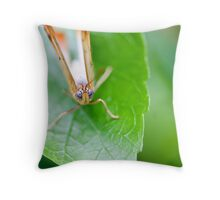Mickey Blue Eyes Throw Pillow