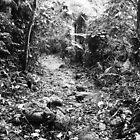 The Brazilian Gold Trail by 1001pawprints