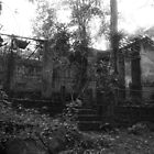A dark and disused zoo in Brazil. by 1001pawprints