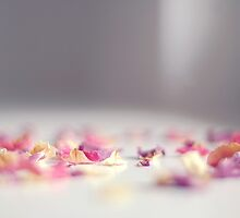 Is this where all the flowers go~ by Tjasa  Gruden