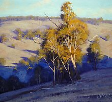Afternoon Shadows Turon Hills nsw Australia by Graham Gercken