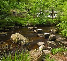 Stepping Stones near Hardcastle Crags by Steve  Liptrot